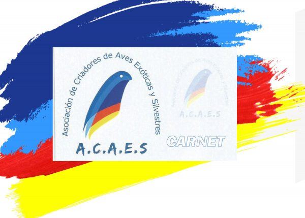 Carnet de socios Acaes Club