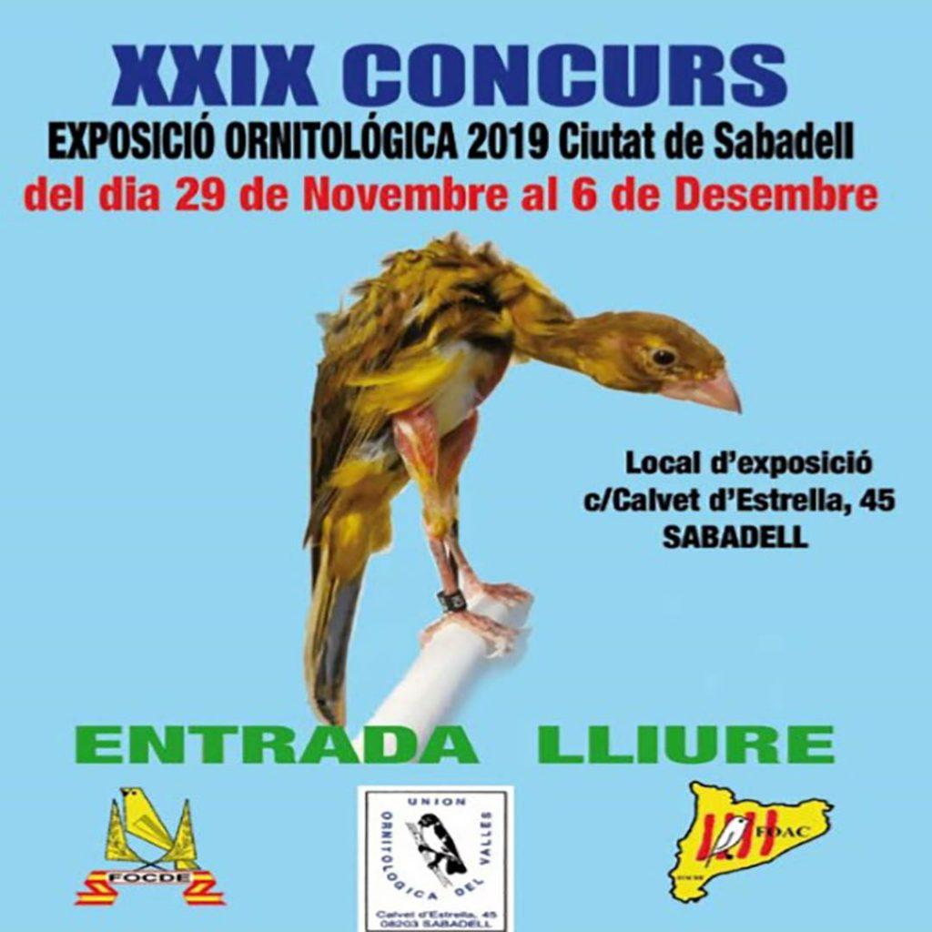 Exposicion ornitologica
