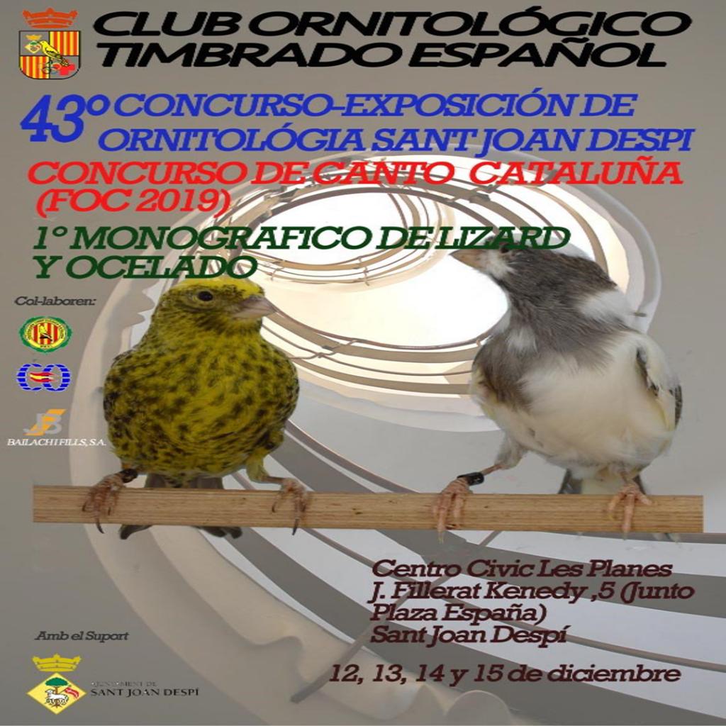 Triptico Canto y local 2019-1