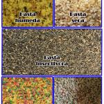 Tipos de pasta de cria